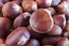 Raw chestnuts Stock Images