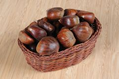 Raw chestnuts in basket. Whole raw chestnuts in shells in a wicker basket against a wooden background Royalty Free Stock Images