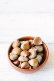 Raw chestnuts in ceramic bowl. Raw chestnuts in ceramic bowl on white surface Royalty Free Stock Image