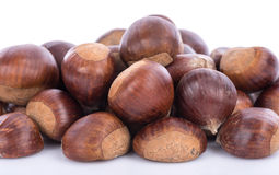 Raw chestnuts Stock Image