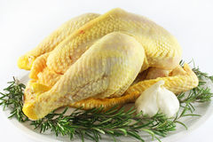 Raw chicken. With rosemary and garlic Royalty Free Stock Photo