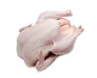 Raw chicken Stock Photography