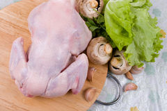 Raw chicken Stock Photo
