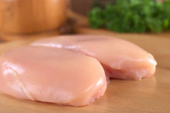 Raw Chicken Breast Stock Image