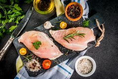 Raw chicken breast filet meat with spices and olive oil top view. Copy space Royalty Free Stock Photo