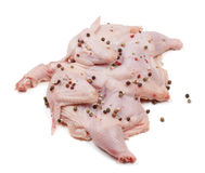 Raw chicken carcass with peppercorns isolated on white background Stock Images