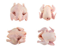 Raw chicken collection isolated Stock Photo
