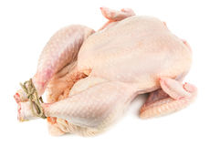 Raw chicken corp Royalty Free Stock Photo