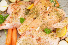 Raw chicken covered with spices Royalty Free Stock Photography