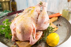 Raw chicken covered with spices Royalty Free Stock Photo