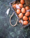 Raw chicken eggs in box Royalty Free Stock Image
