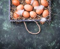 Raw chicken eggs in box Royalty Free Stock Photography