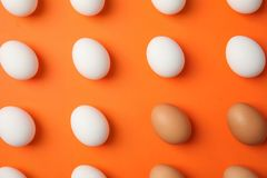Raw chicken eggs on color background. Top view royalty free stock photography