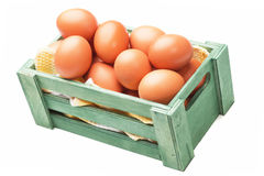 Raw chicken eggs Stock Images