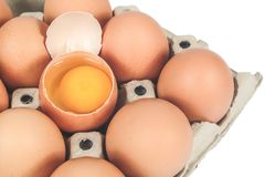 Raw chicken eggs in egg box on white. Background royalty free stock photography