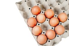 Raw chicken eggs in egg box on white. Background royalty free stock images