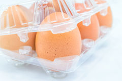 Raw chicken eggs. In egg box on white background Royalty Free Stock Image