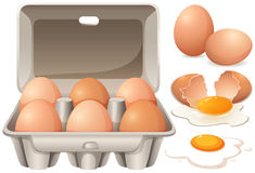Raw chicken eggs and yolk Stock Photos
