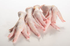 Raw chicken feet on a white table Stock Images