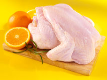 Raw chicken. Fresh raw chicken on cutting board with oranges Royalty Free Stock Image