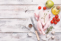 Raw chicken with herbs. Whole raw chicken with herbs and spices ingredients on white wooden background, top view with copy space Royalty Free Stock Photos