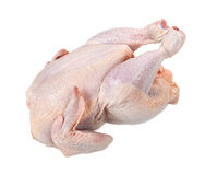 Raw chicken isolated on white background Stock Photography