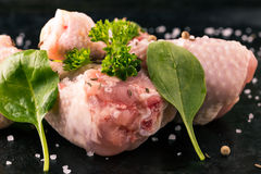 Raw chicken legs with green fresh spinach and spice. Horizontal photo of chicken legs. Few pieces of raw meat with bones. Green parsley and spinach leaves on royalty free stock photos