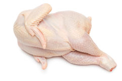 Raw chicken lies on one side Stock Images