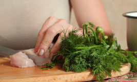 Raw chicken meat with dill cooking hands with knife Royalty Free Stock Image
