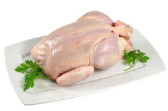 Raw chicken Stock Image