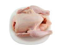 Raw chicken in plate isolated Stock Image