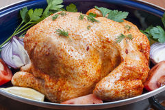 Raw chicken in pot. Spicy raw whole chicken ready for roasting Royalty Free Stock Photo