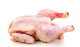 Raw chicken ready to cook. Isolated on a white background Stock Photos