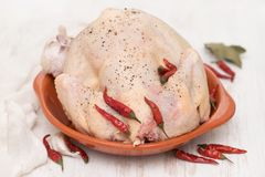 Raw chicken with red pepper in ceramic dish on wooden background Royalty Free Stock Photo