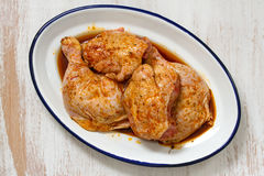 Raw chicken in sauce on dish Royalty Free Stock Photos