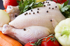 Raw chicken with vegetables. Raw chicken with pepper and vegetables ready to be prepared stock photos