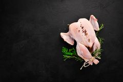 Raw chicken with vegetables and spices. Barbecue. On a black stone background. Top view. Free copy space stock image