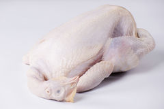 Raw chicken Royalty Free Stock Photo