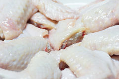 Raw chicken wings get ready for cooking. Fresh raw chicken wings on white dish, get ready for cooking Royalty Free Stock Image