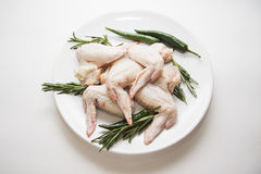 Raw chicken wings with rosemary. And green chili peppers Royalty Free Stock Image