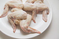 Raw chicken wings only Royalty Free Stock Image