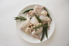 Raw chicken wings withchili green pepper and rosemary. Closeup of plate with raw chicken wings. copy space for text Stock Image