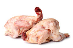 Raw chickens Stock Images