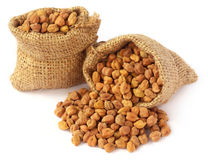 Raw Chickpea Royalty Free Stock Photo