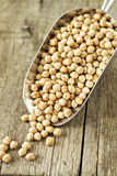 Raw chickpeas Royalty Free Stock Photography
