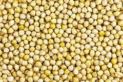 Raw chickpeas background Royalty Free Stock Photos