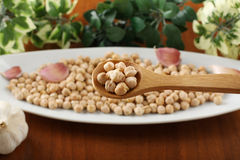 Raw chickpeas on spoon Stock Photos