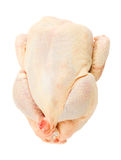Raw chiken Royalty Free Stock Photography