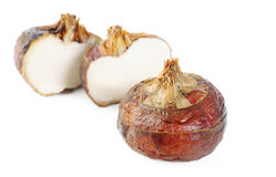 Raw chinese water chestnut Royalty Free Stock Photo