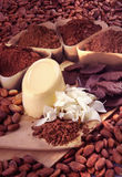 Raw chocolate Royalty Free Stock Images